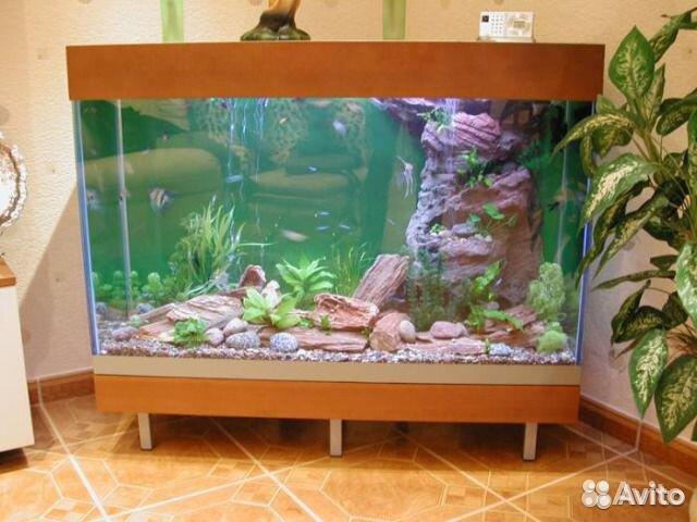 Новый аквариум 220 литров - купить, продать или отдать в Нижегородской области на Avito - Объявления на сайте Avito