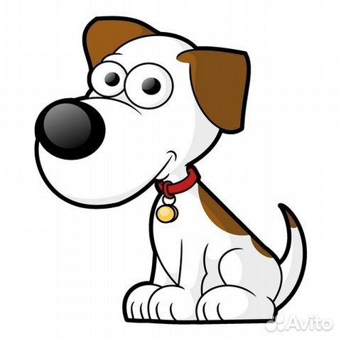 Стрижки собакам цены