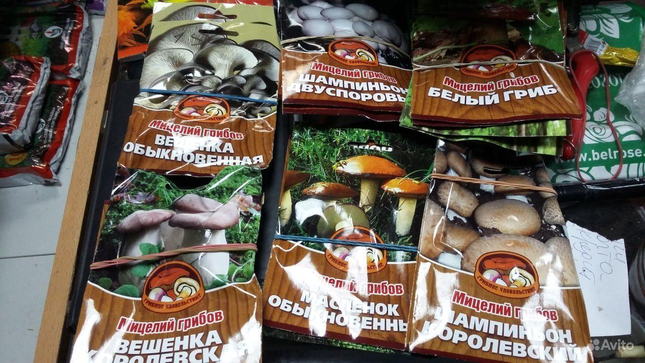 Семена грибов купить на Зозу.ру - фотография № 5