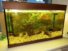 Продам аквариум. 140 литров