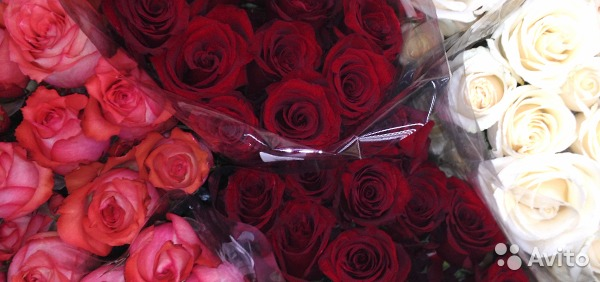 Розы купить мелким оптом искусственные цветы для повязок на голову купить оптом