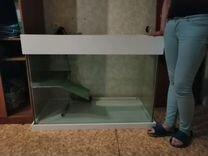 Черепашник (аквариум)