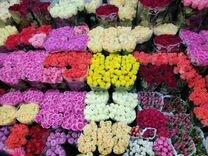 Розы оптом цветы — Растения в Москве