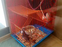 Крысы Дамбо с клеткой